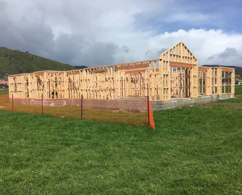 Timber frames standing